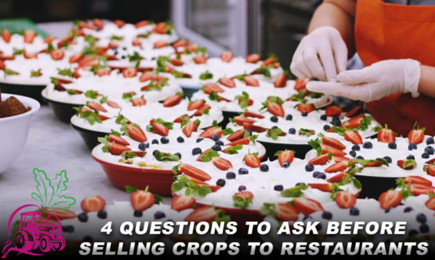 4 Questions to Ask Before Selling Crops to Restaurants